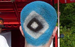 hsv-mit-haut-und-blaue-haar